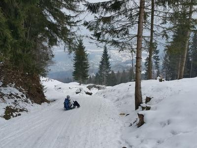 Breitenberg-Rodelbahn