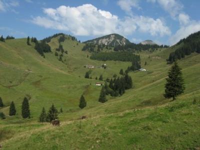 4-Gipfel-im NSG Geigelstein