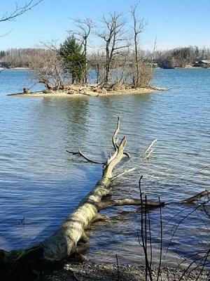 Um das Kleinod Seehamer See