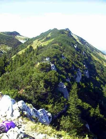 Blick vom Weitlahnerkopf auf den Kamm der Aschenthaler Wände.