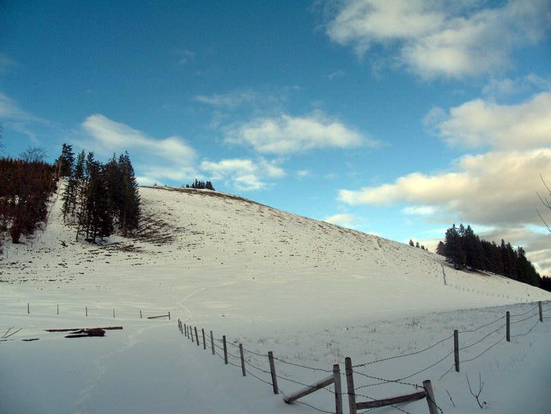 Der freie Gipfelhang des Erlbergkopfes