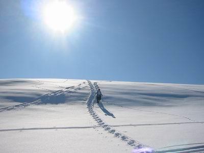 Schneeschuhgehen am leichten Gipfelhang des Haindorfer Bergs.