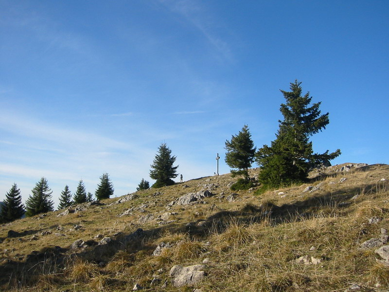 Am Gipfel des Seebergkopf