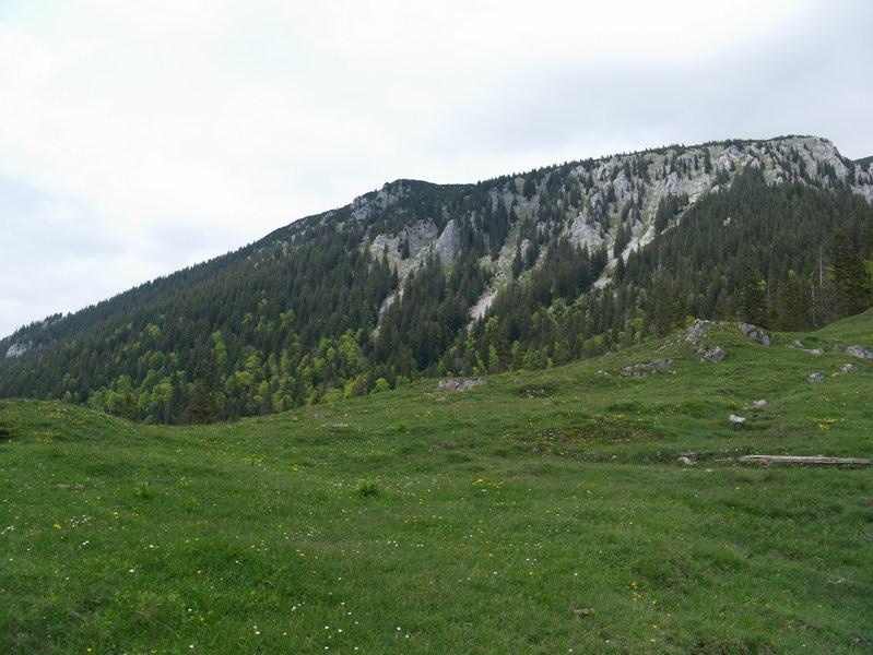 Den Gipfelbereich der Benediktenwand sieht man auf dieser Tour nur von unten.