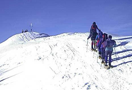 Auf dem Weg (knapp unterhalb des Gipfels vom Schafsiedl)