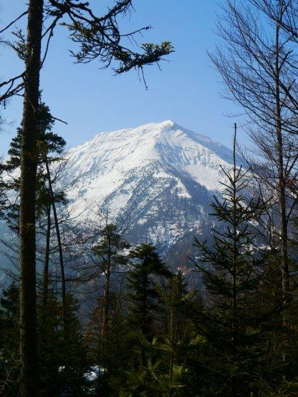 Beim Aufstieg gibt es immer wieder schöne Blicke auf die gegenüber liegende Seekarspitze.