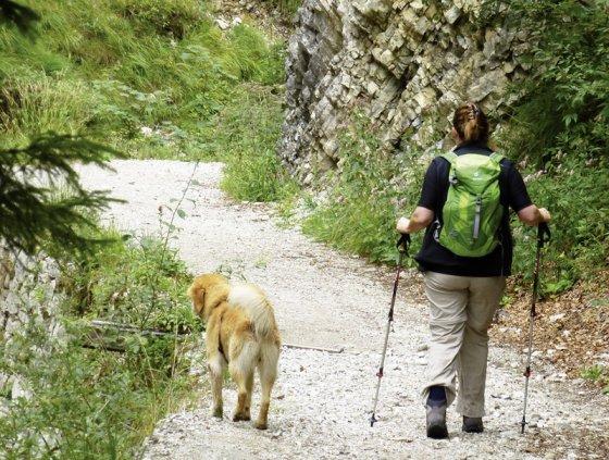 Die Tour ist mit berggängigen Hunden machbar (Copyright Conrad Stein Verlag)