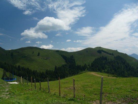 Von der Burgeralm der Blick auf das grüne Lochner Horn (ganz rechts)