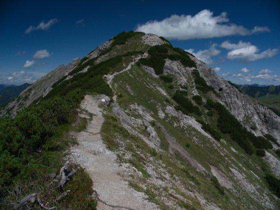 Der Gipfel des Plumsjoch