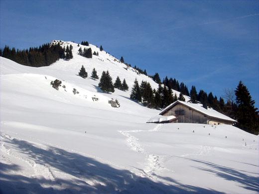 Nach dem Waldaufstieg gelangt man in das Almengebiet mit freiem Blick auf den Gipfel.