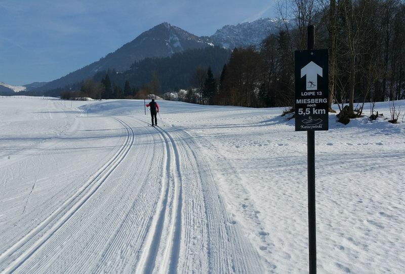 Nähe Durchholzen, im Hintergrund Tiroler Heuberg und Zahmer Kaiser (rechts)