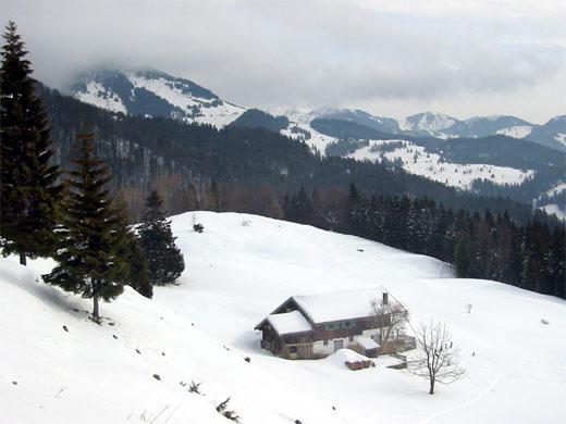 oben: Rückblick während des Aufstiegs auf die Bubenau-Alm. Links dahinter im Nebel der Spitzstein.