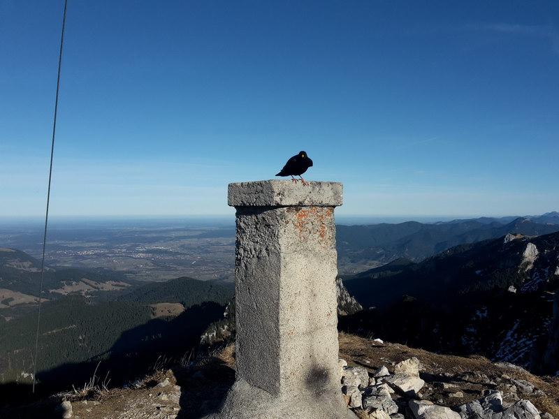 Der Gipfel der Benediktenwand - einmal mit anderer Perspektive