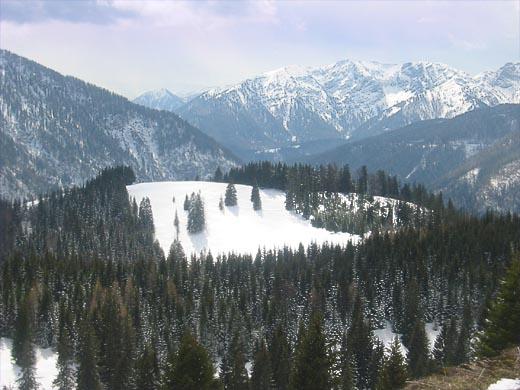Das ist er - der harmlose Mitterberg. Ein kleiner, unscheinbarer Hügel. Doch wer eine leichte und nicht die Kondition fordernde kurze Schneeschuhwanderung sucht, für den ist dieser Berg gerade recht. Das Foto entstand auf dem höchsten Punkt dieser Tourenbeschreibung.