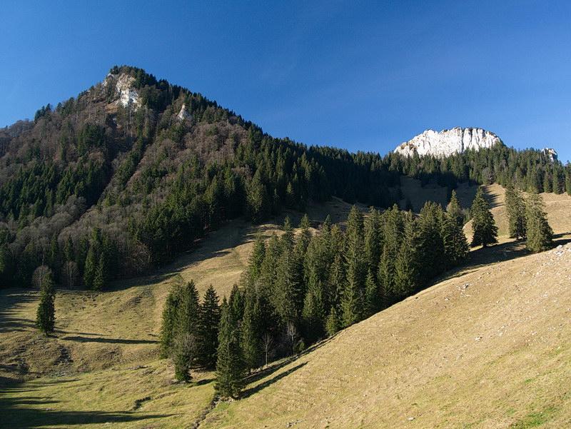 Bei der Daffnerwaldalm präsentieren sich Kitzstein (links) und Wasserwand (rechts).