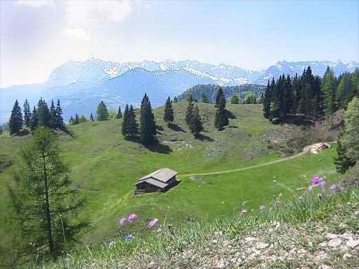 Wo man aus dem Waldbereich heraustritt und der Gipfelanstieg auf den Grasweiden beginnt, an dieser Stelle hat man diesen herrlichen Blick über das Almgebiet auf das Kaisergebirge.
