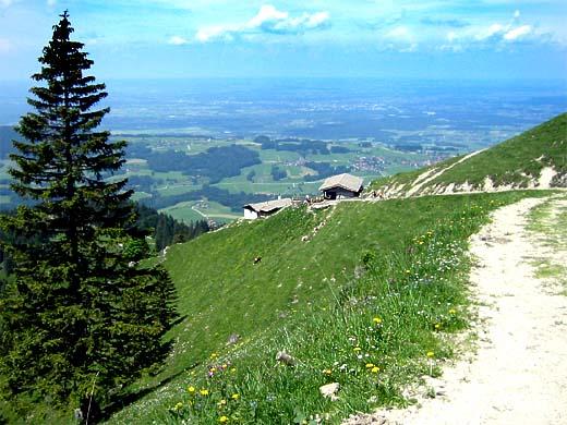 Hier befindet man sich knapp unterhalb des höchsten Bereichs dieser Tour: Ein prächtiger Blick auf die Seitenalmen, den Samerberg und das Alpenvorland.