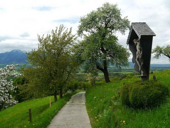 Auf der Abfahrt hinter dem Weiler Vordersteinberg