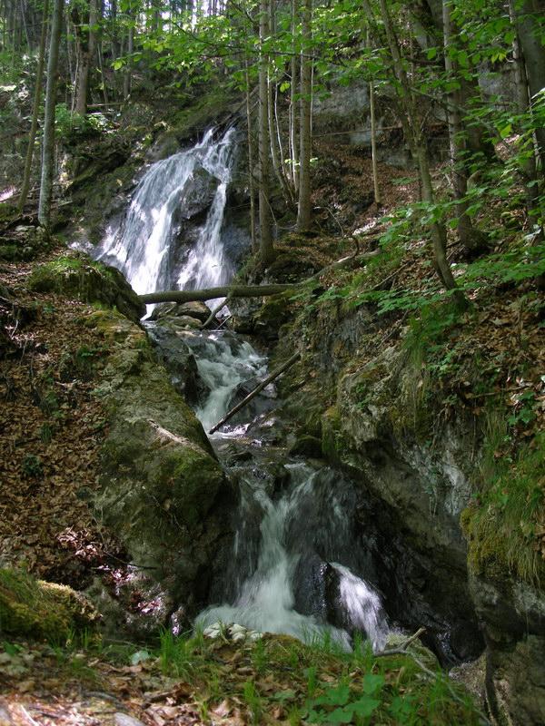 Im untersten Teil unserer Wanderung bewundern wir immer wieder schöne Wasserfälle.
