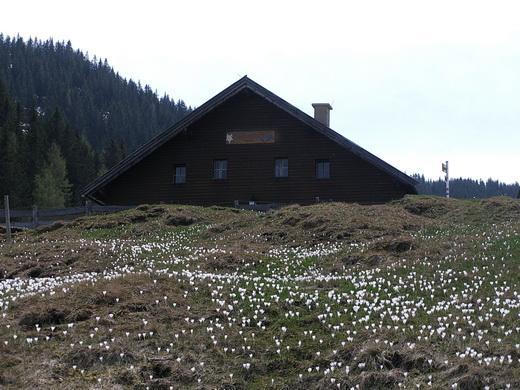 Bei der Rosskopfhütte.