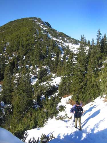 Wanderer auf dem Weg zum Gipfelziel. Sie befinden sich ca. 30 Minuten unter dem Gipfel, auf dem Rücken zwischen Heuberg und Kienberg.