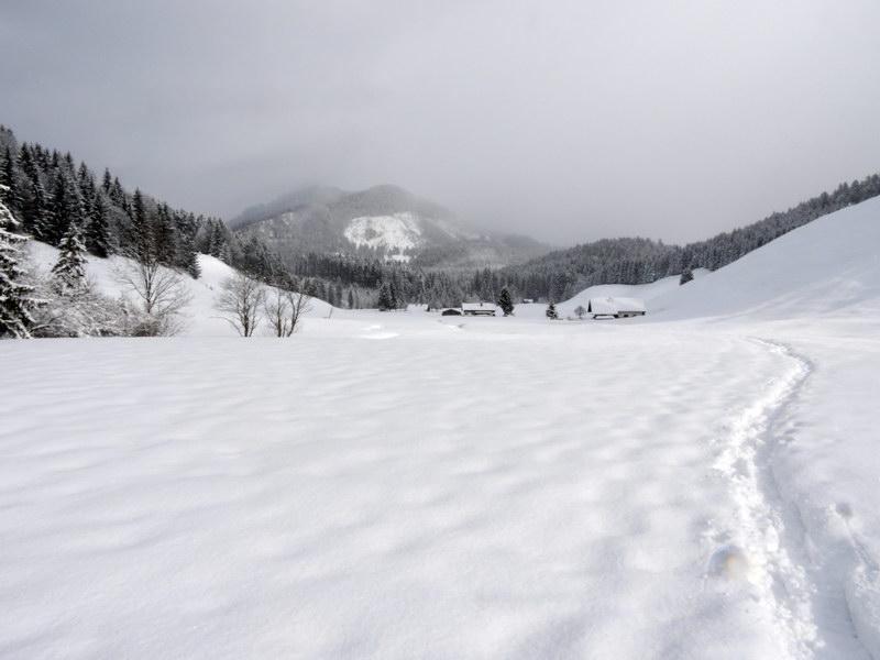 Die Euzenau ist ein Hochtal, das im Winter wenig besucht wird.