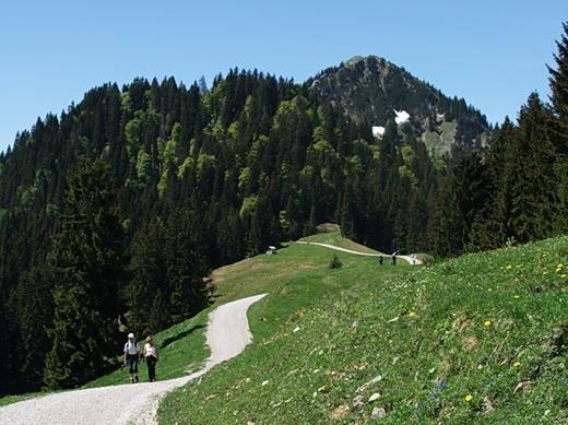 Kurz hinter der Aueralm präsentiert sich der Gipfelblock des Fockensteins.