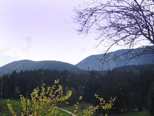 Der Schwarzenberg und der Riesenberg dahinter von Hartbichl aus