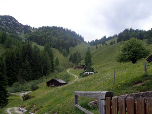 Die Oberaudorfer Almen, links im Hintergrund das Trainsjoch.