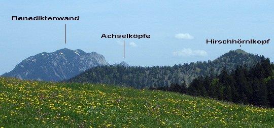 Blick von der Jochbergalm zur Benediktenwand