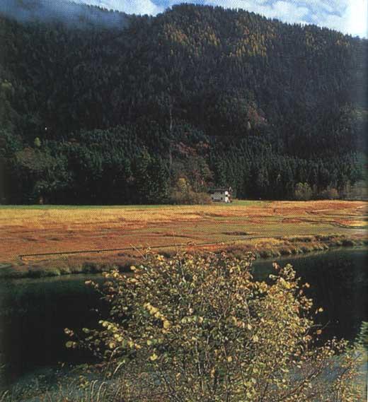 Der Weitsee, Baden fernab von Hektik und Trubel.