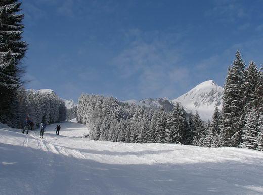Der Aufstieg über die ehemalige Skipiste. Rechts der Gipfel des Geigelstein. Der Gipfelanstieg erfolgt über den auf diesem Foto linken Grat (Südgrat), teilweise aber auch dahinter.
