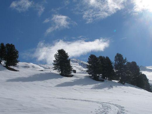 Noch ist der Gipfel (Bildmitte, zwischen den Bäumen) ca. 2 Stunden entfernt.