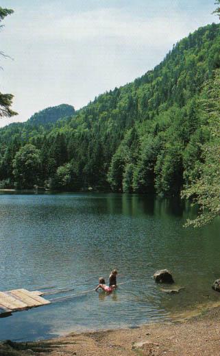 Aufgrund seines seichten Ufers ist der kleine Pfrillsee gerade für Kinder sehr gut zum Baden geeignet.