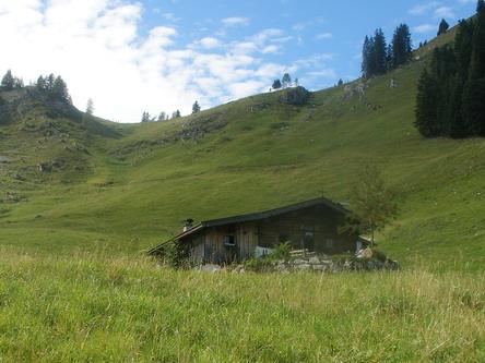 Die Hageralpe. Dahinter das Jöchl, über welches man in kurzer Zeit zum Gipfel des Heubergs gelangt.