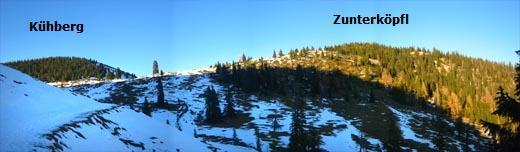 Blick von der Nachbergalm auf den nahen Gipfel des Zunterköpfl.