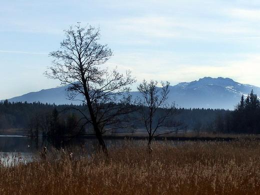 Der idyllische Hartsee - im Hintergrund Hochplatte und Kampenwand