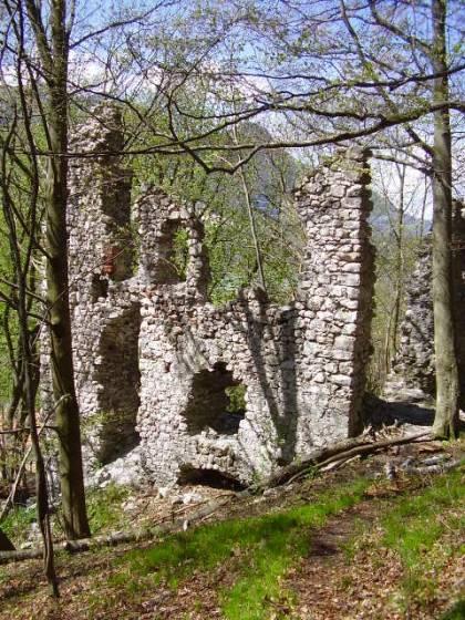Die Ruine der Burg Katzenstein, direkt am Grenzübergang Windshausen gelegen.
