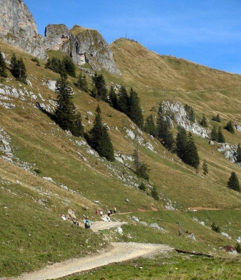 Der Rotwand-Gipfel