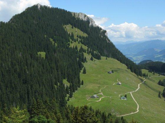 Beim Abstieg über den Steilner Grat vom Steintraithen ergibt sich dieser schöne Blick auf den Brünnstein und die Himmelmoos-Almen.