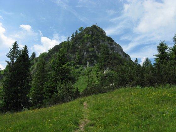 Kurz vor Erreichen des Weitlahnerkopf - Der Weg geht rechts unterhalb des Gipfels vorbei und dann teilweise in Serpentinen steil nach oben bis man links wieder das Gipfelkreuz sieht.