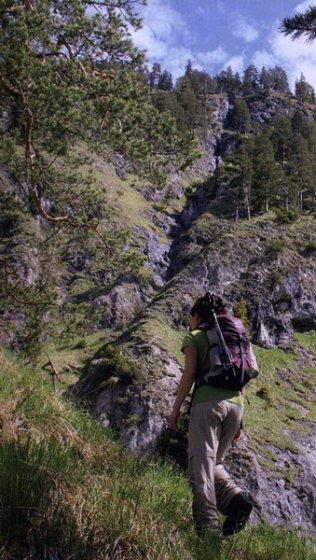 Der Aufstieg vom Isartal zum Schürpfeneckberg ist im oberen Abschnitt sehr steil.
