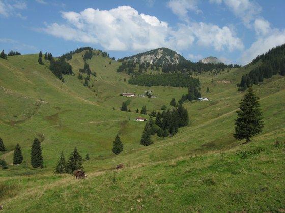 Blick auf die Karalmen und die drei Gipfel Karkopf (links), Breitenstein (Mitte) und Geigelstein (rechts)