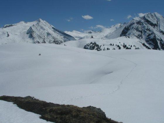 Die letzten Minuten zum Gipfel: An der Spur ist gut zu erkennen, dass man in einem weiten Linksbogen durch eine Senke zu dem hier kaum sichtbaren Gipfel gelangt. Standpunkt = Vorgipfel (siehe unten).