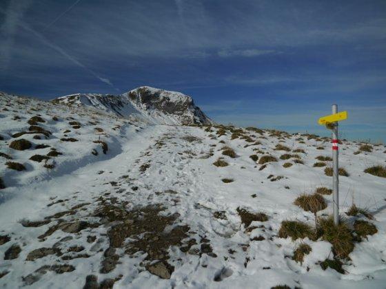 Bei der Lämperer Alm sehen wir endlich den Gipfel in voller Größe vor uns.  Der Gipfelanstieg erfolgt unschwer auf dem linken Grat.