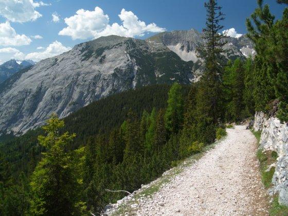 Wenige Minuten vor der Hütte ist der Weg äußerst schlecht zu befahren (zumindest bergauf).