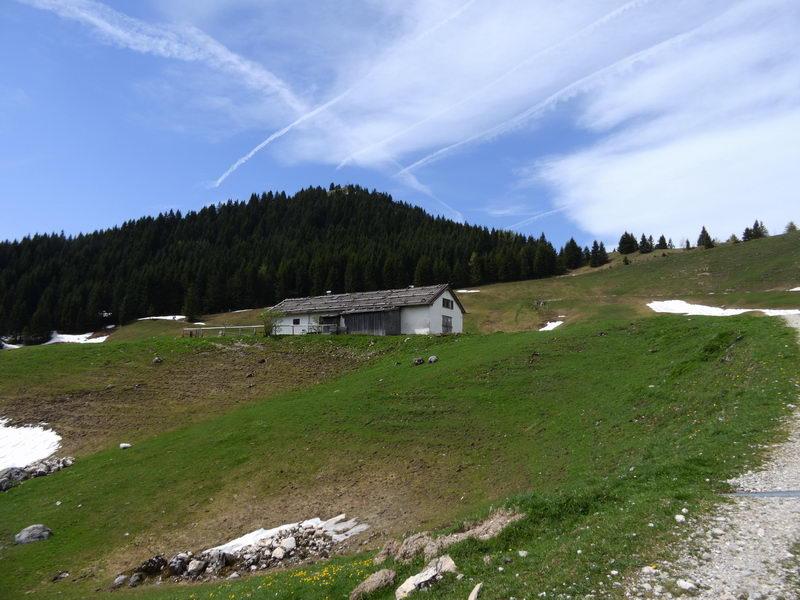 Der Gipfel des Feichteck von Nordosten (Pölcheralm) aus gesehen.
