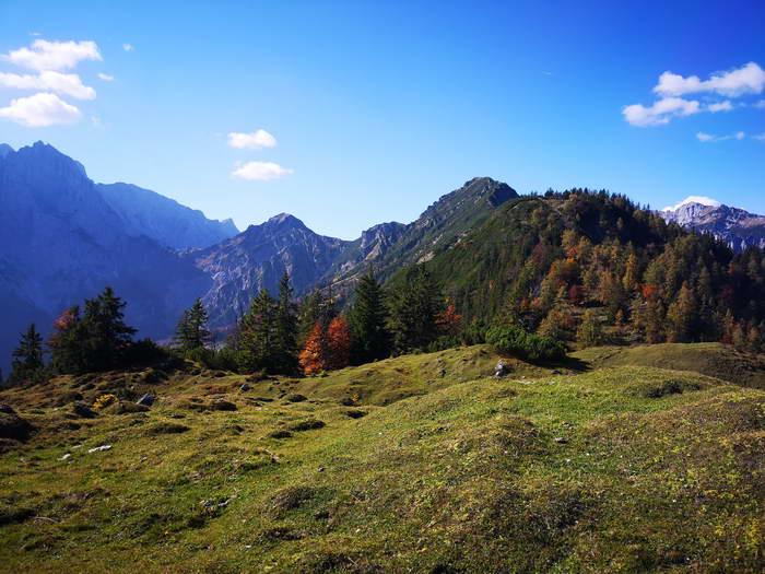 Hier, wo die Forststraße endet, sehen wir endlich den Gipfelaufbau des Feldbergs (etwas rechts von der Mitte).