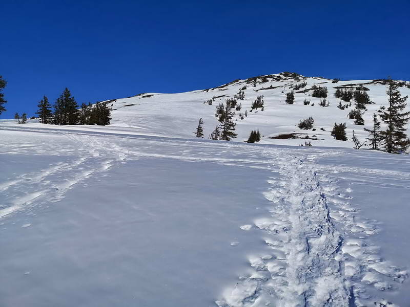 Der Gipfel ist nur noch 15 - 20 Minuten entfernt - das kleine Gipfelkreuz lässt ihn weiter entfernt erscheinen.