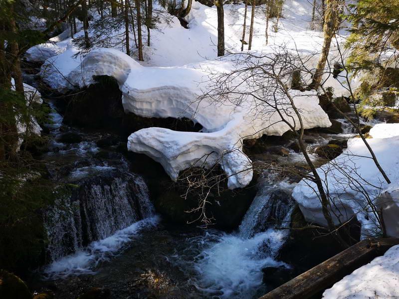 Im Pfenniggraben bezaubern der Schiffbach und seine Zuflüsse.